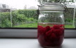 A Spirited Adventure: Raspberry Gin